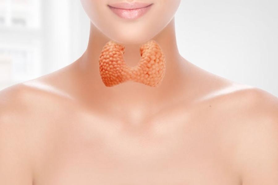 Сдать анализ крови на гормоны щитовидной железы